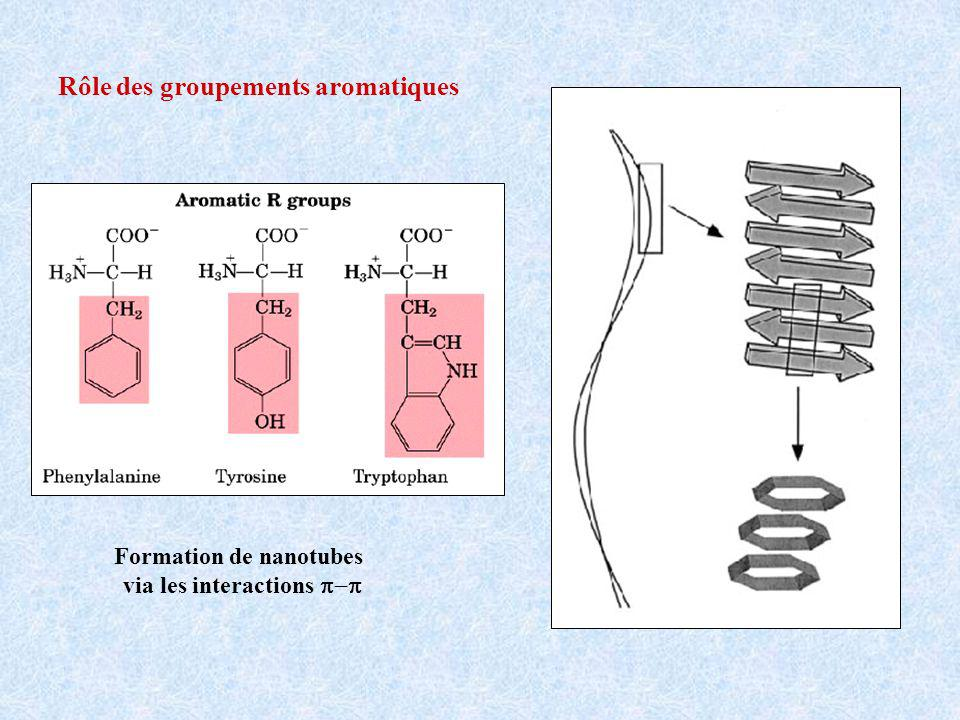 Formation de nanotubes via les interactions p-p