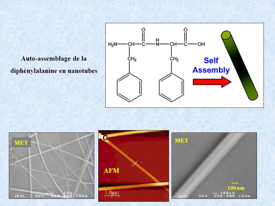 diphénylalanine en nanotubes
