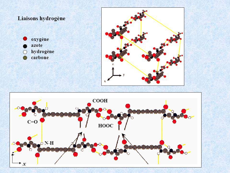Liaisons hydrogène z x oxygène azote hydrogène carbone COOH C=O HOOC