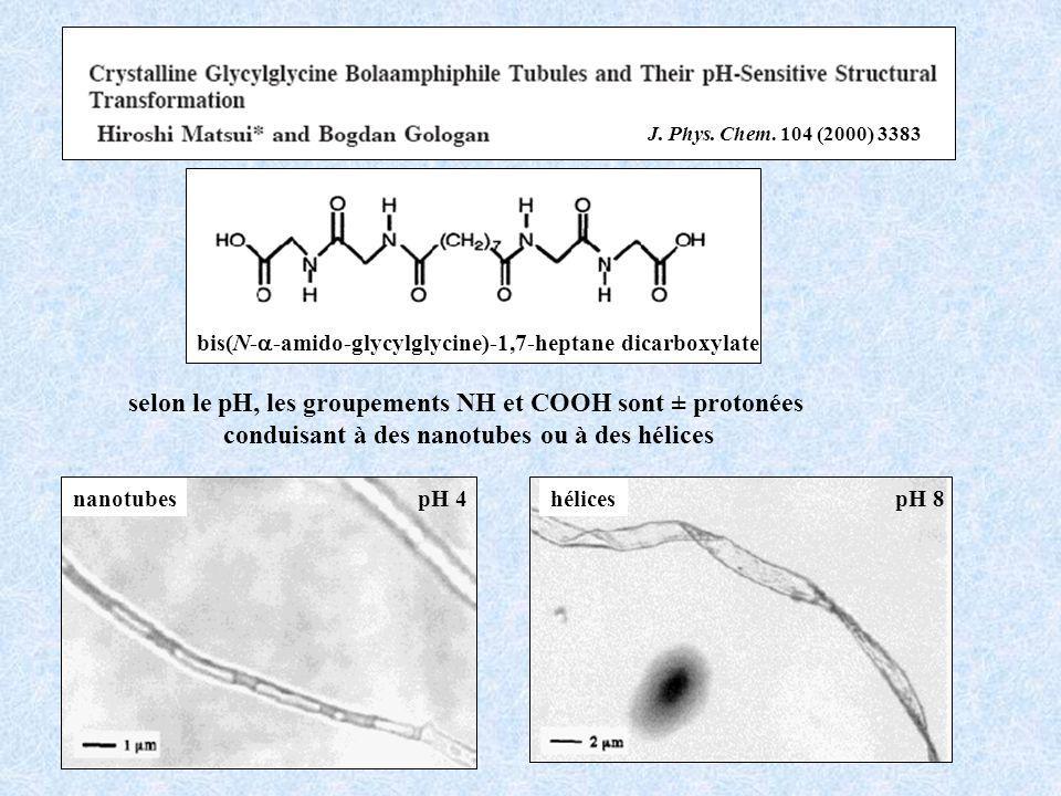 selon le pH, les groupements NH et COOH sont ± protonées
