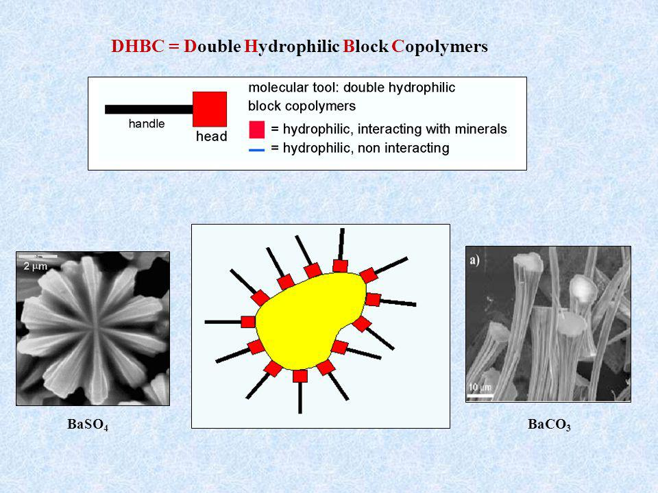 DHBC = Double Hydrophilic Block Copolymers