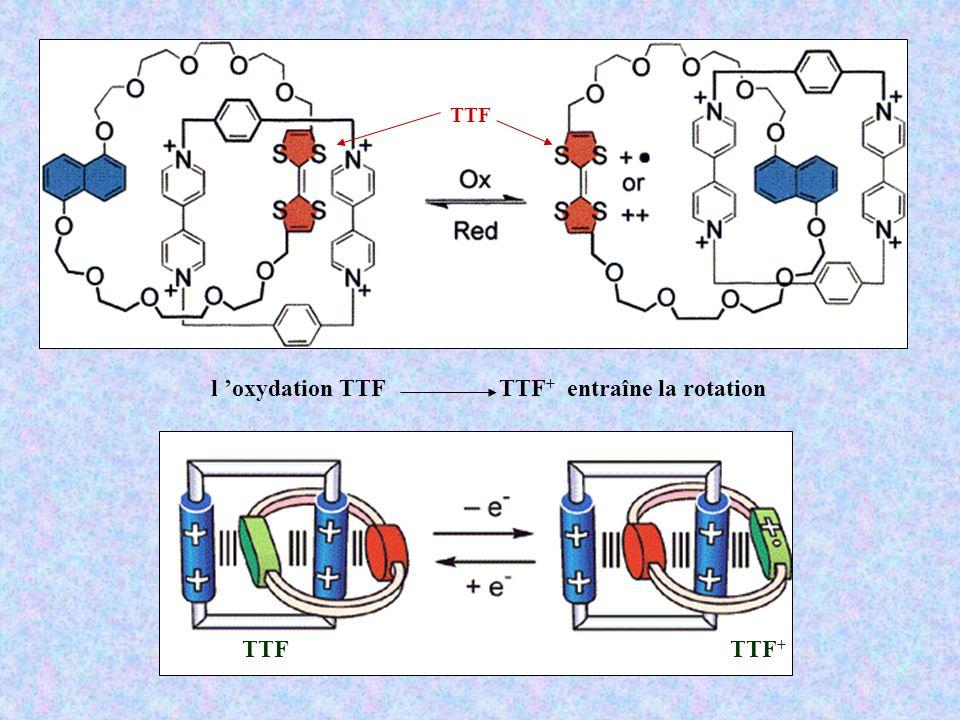 l 'oxydation TTF TTF+ entraîne la rotation