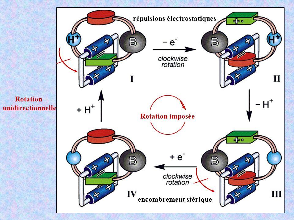 répulsions électrostatiques
