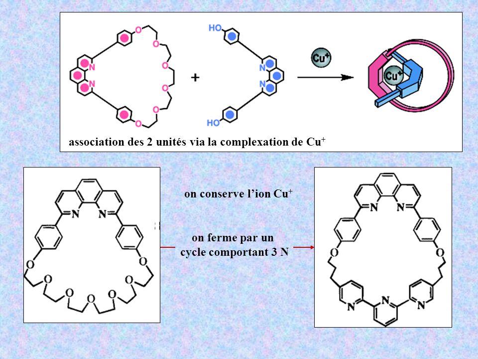 association des 2 unités via la complexation de Cu+