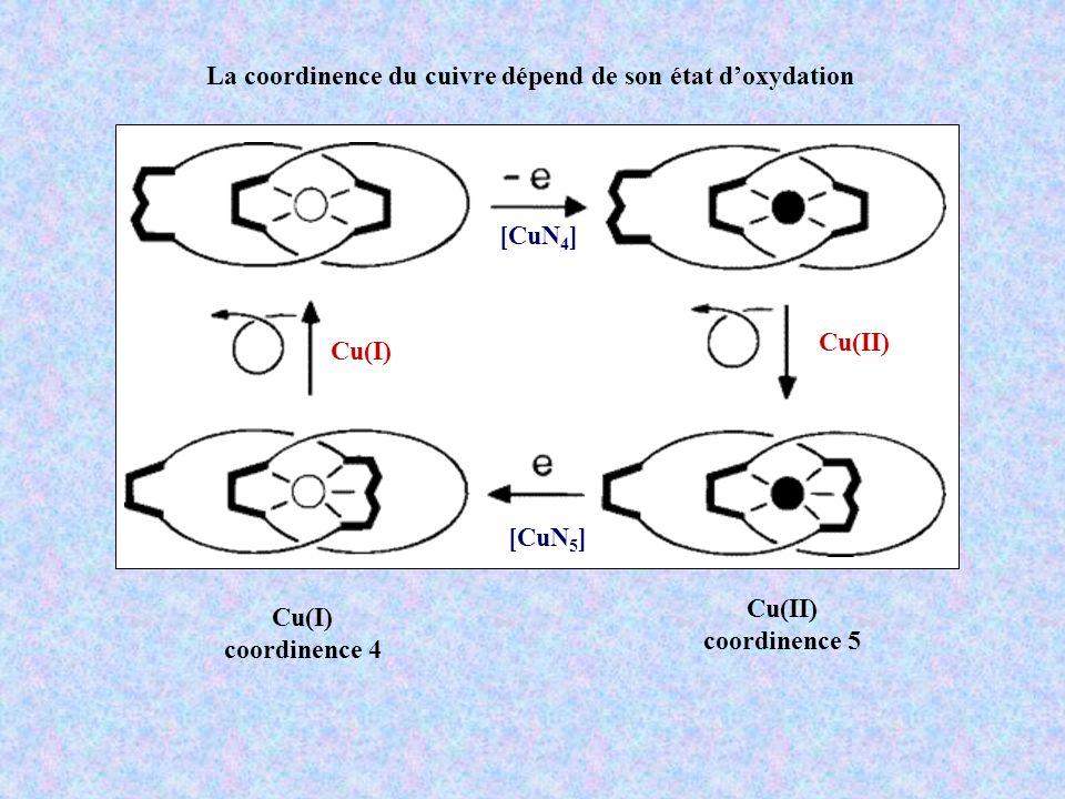 La coordinence du cuivre dépend de son état d'oxydation