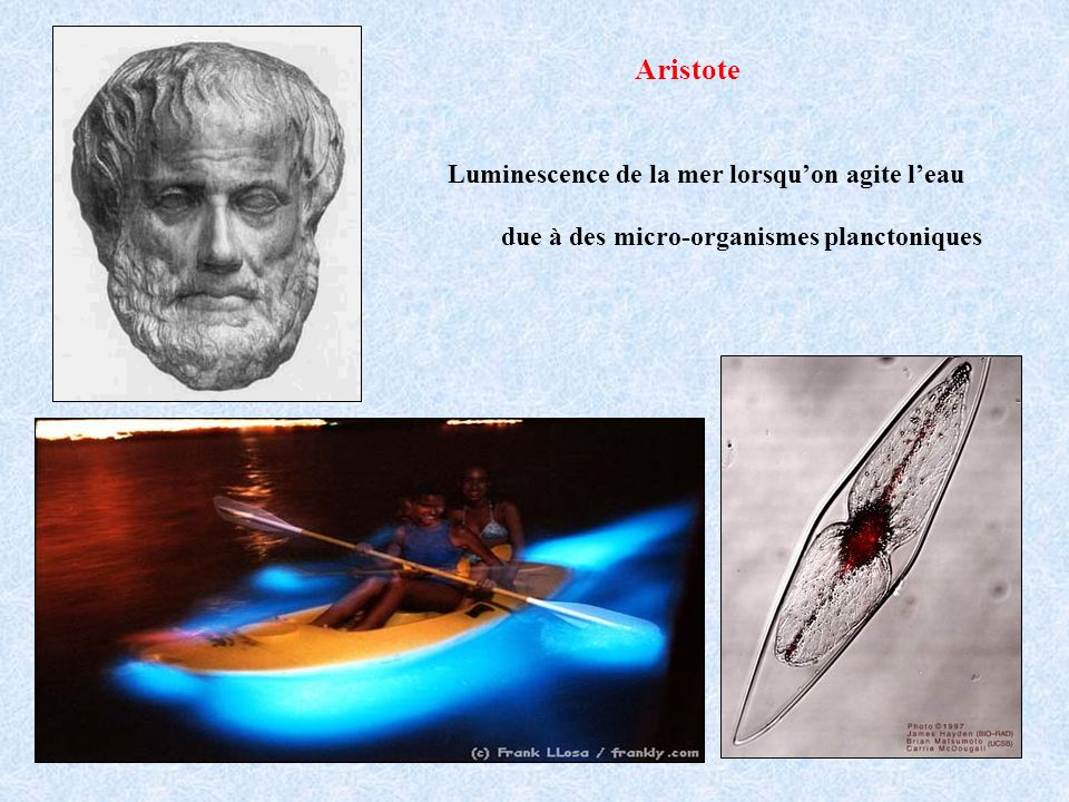 Aristote Luminescence de la mer lorsqu'on agite l'eau