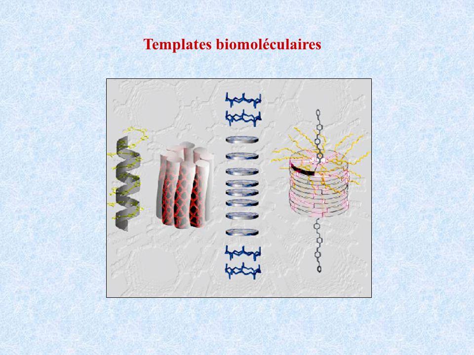 Templates biomoléculaires