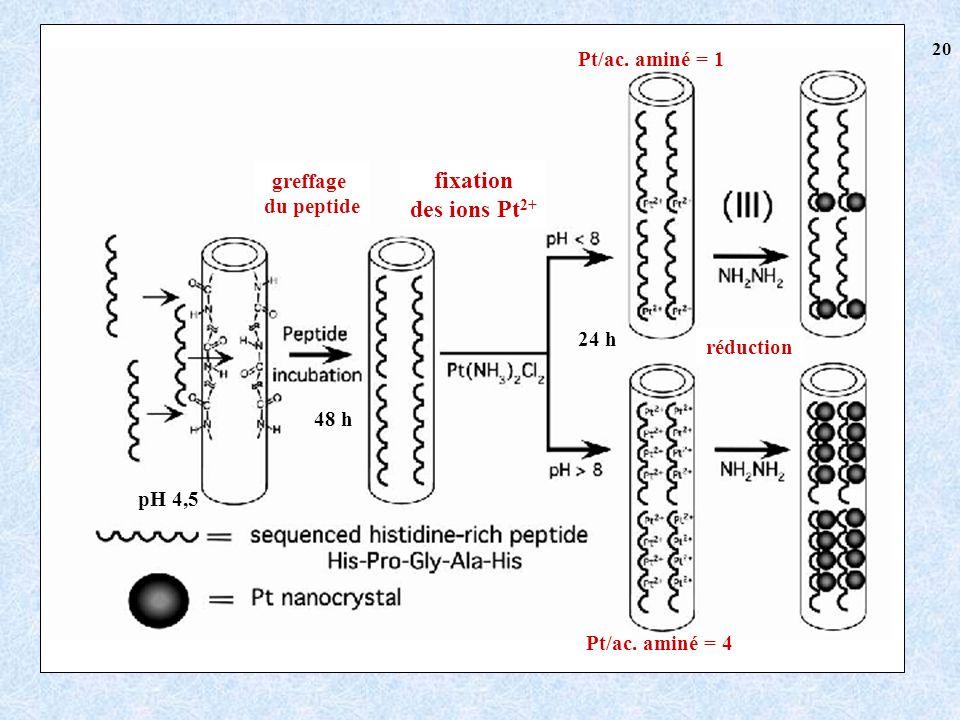 fixation des ions Pt2+ Pt/ac. aminé = 1 greffage du peptide 24 h