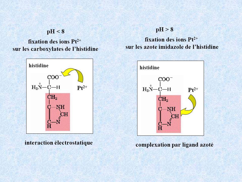 sur les azote imidazole de l'histidine fixation des ions Pt2+