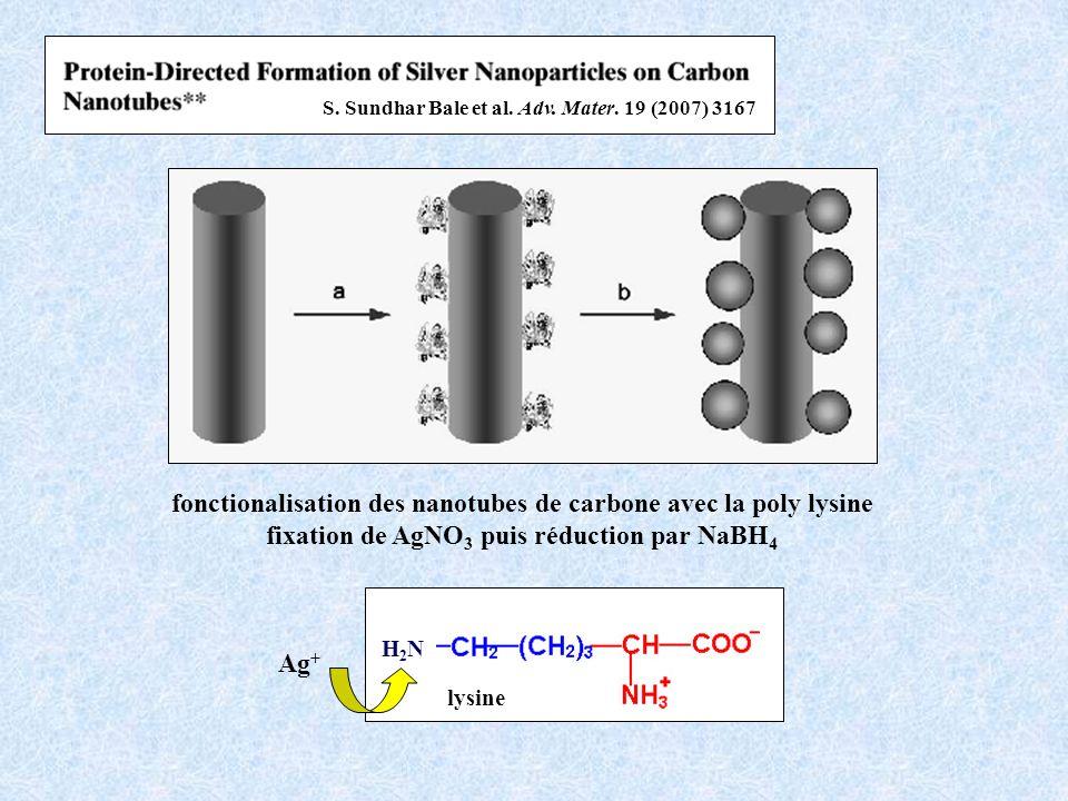 fonctionalisation des nanotubes de carbone avec la poly lysine