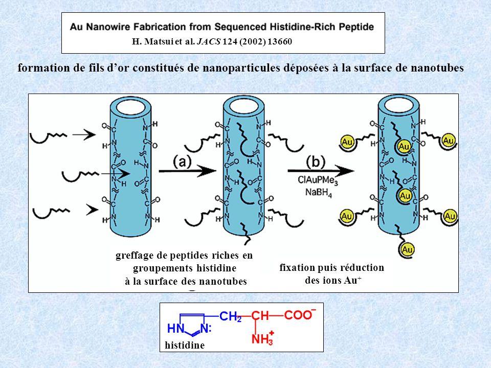 H. Matsui et al. JACS 124 (2002) 13660 formation de fils d'or constitués de nanoparticules déposées à la surface de nanotubes.