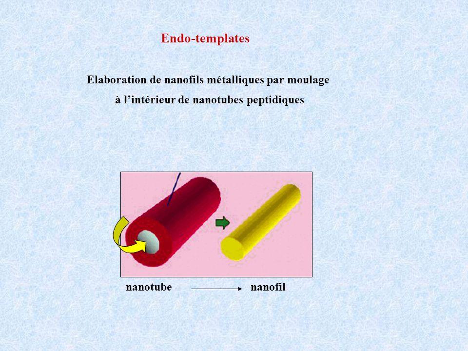Endo-templates Elaboration de nanofils métalliques par moulage