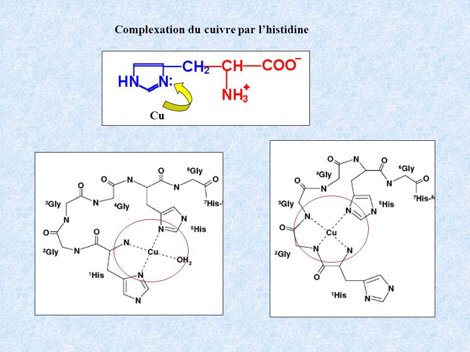 Complexation du cuivre par l'histidine