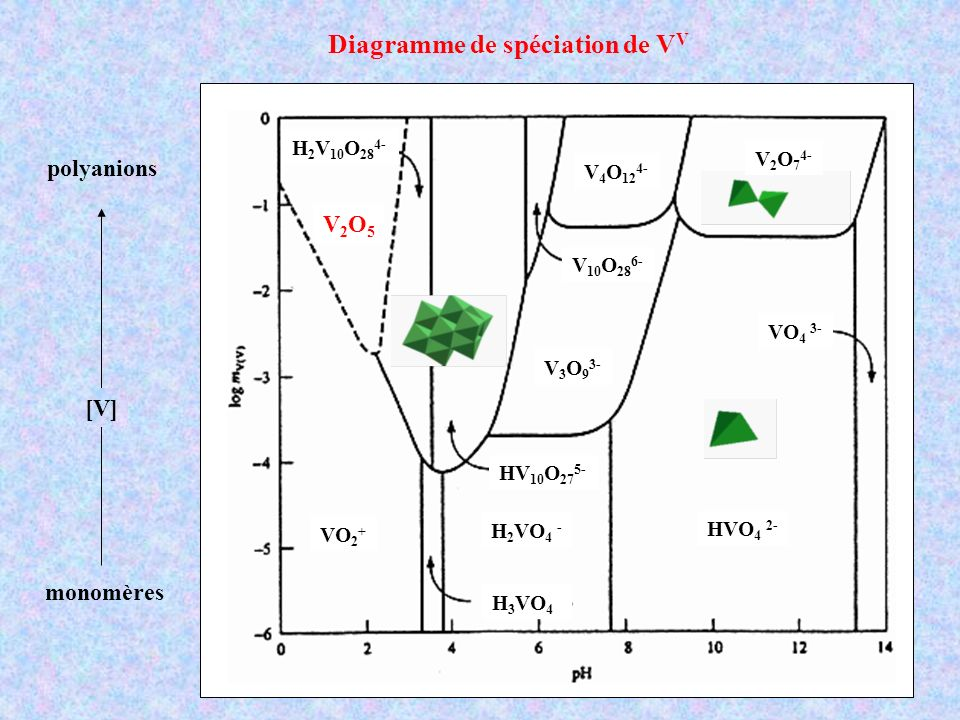 Diagramme de spéciation de VV