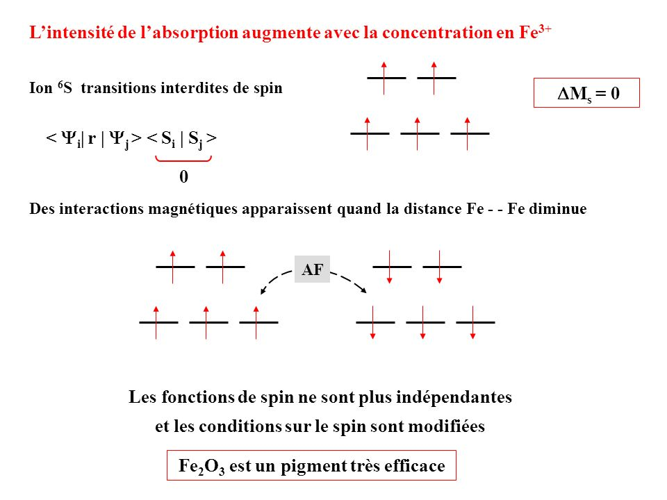L'intensité de l'absorption augmente avec la concentration en Fe3+