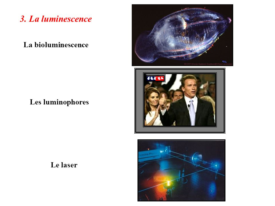 3. La luminescence La bioluminescence Les luminophores Le laser
