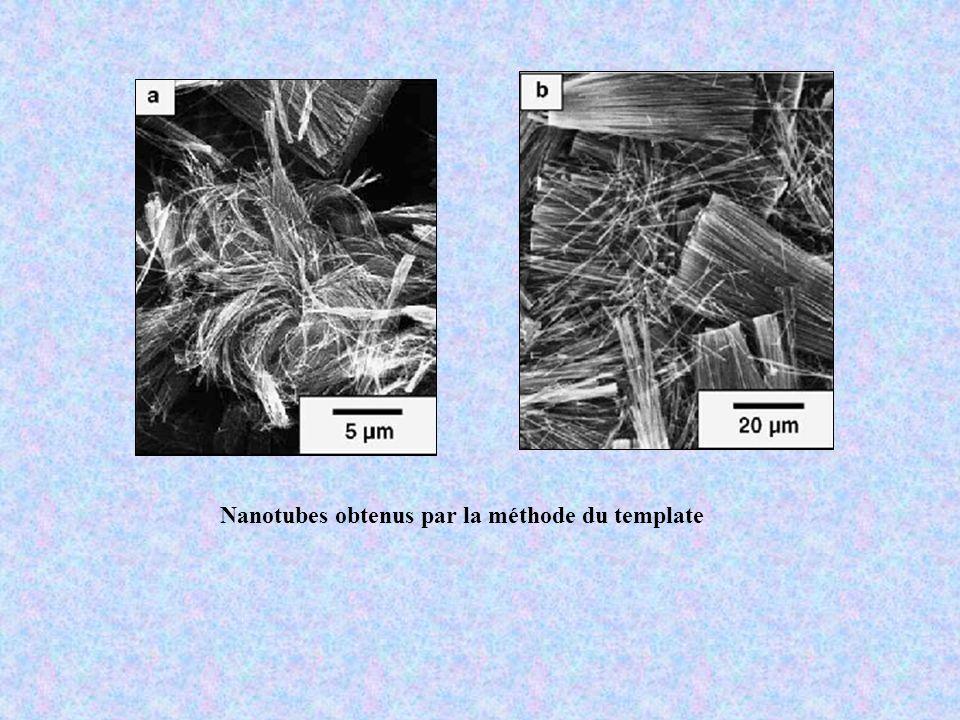 Nanotubes obtenus par la méthode du template