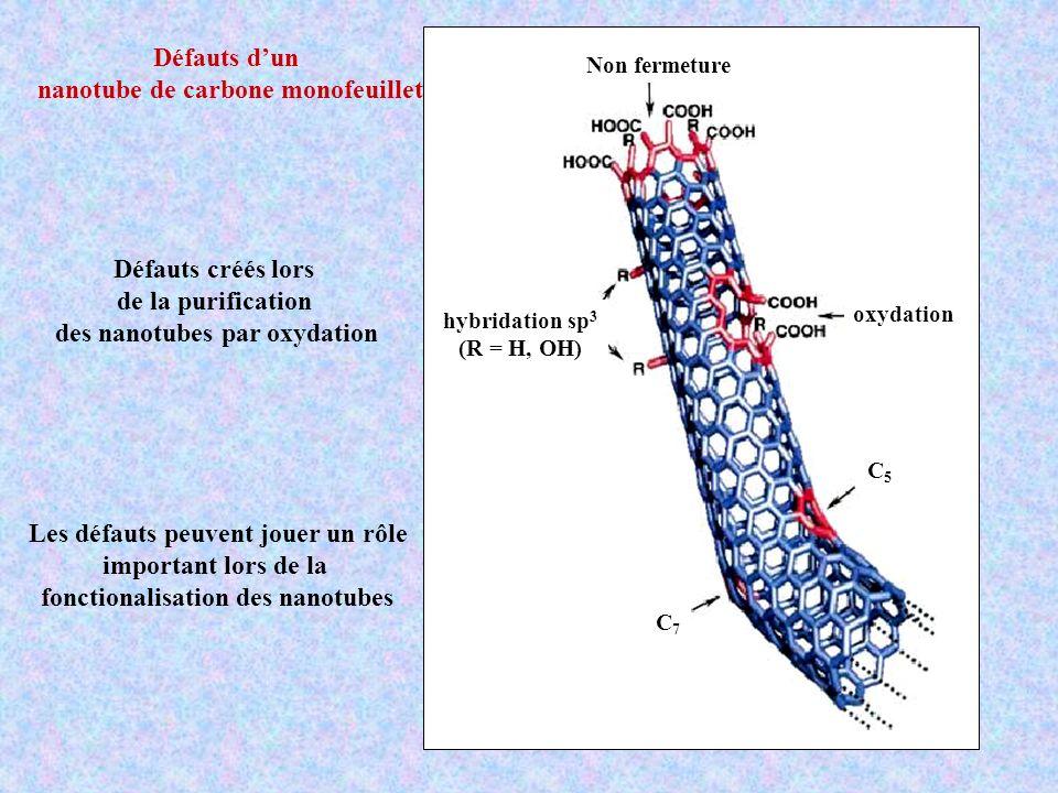 nanotube de carbone monofeuillet