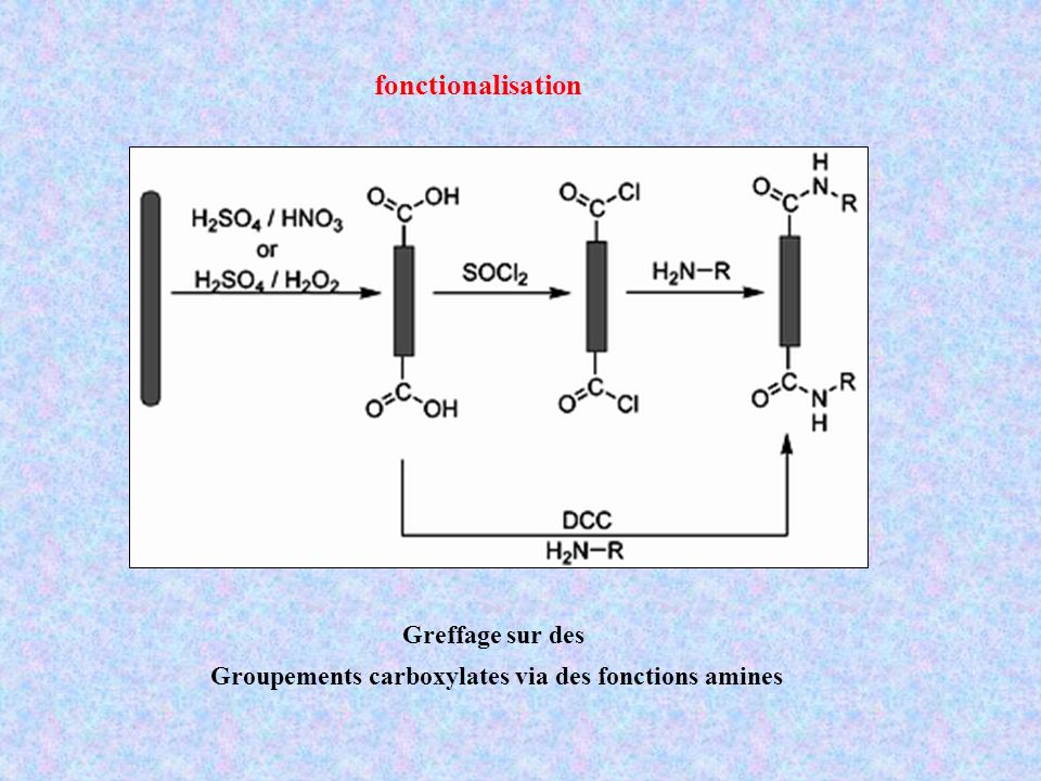 Groupements carboxylates via des fonctions amines