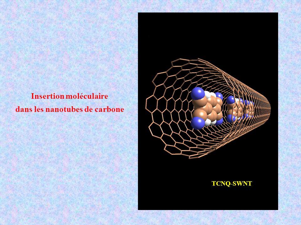 Insertion moléculaire dans les nanotubes de carbone