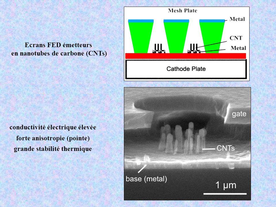 en nanotubes de carbone (CNTs)