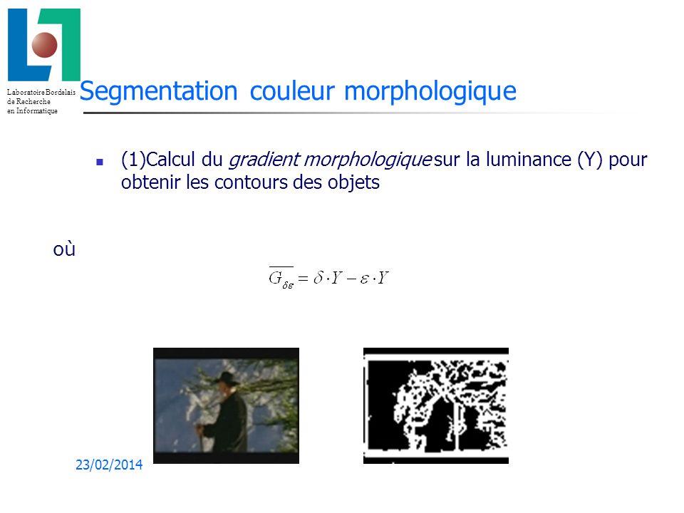 Segmentation couleur morphologique