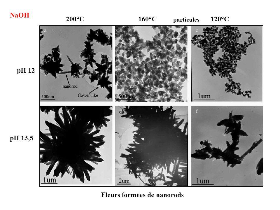 Fleurs formées de nanorods