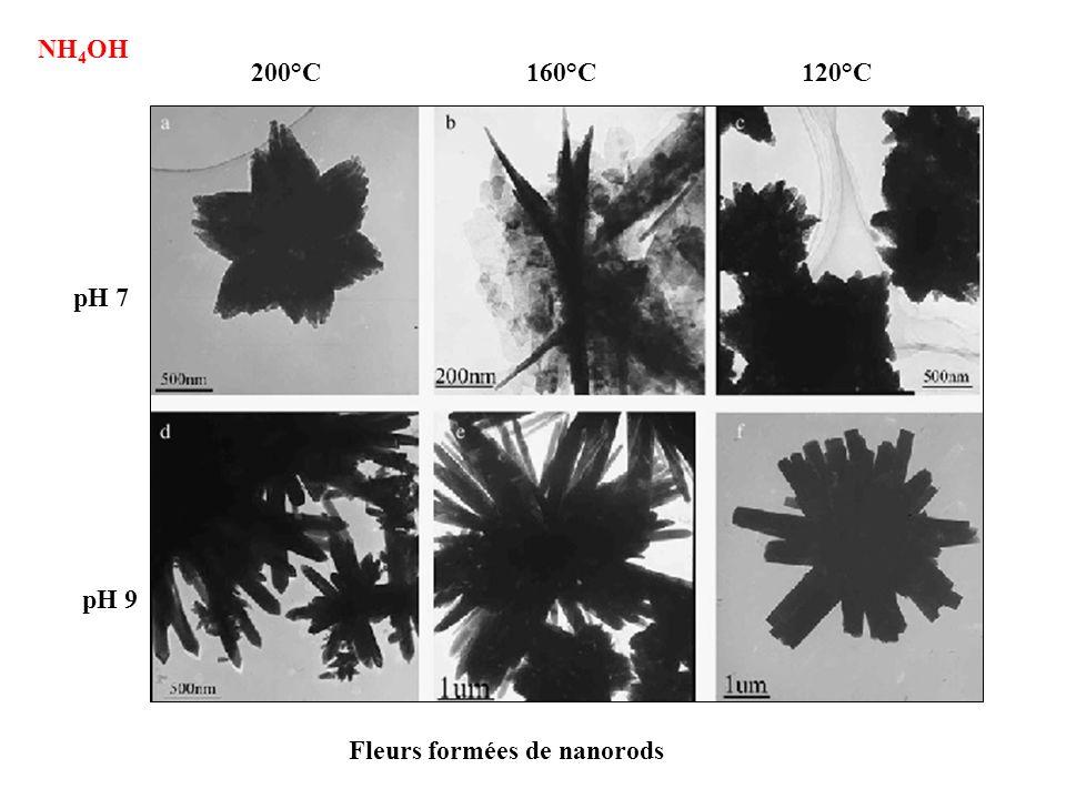 NH4OH 200°C 160°C 120°C pH 7 pH 9 Fleurs formées de nanorods