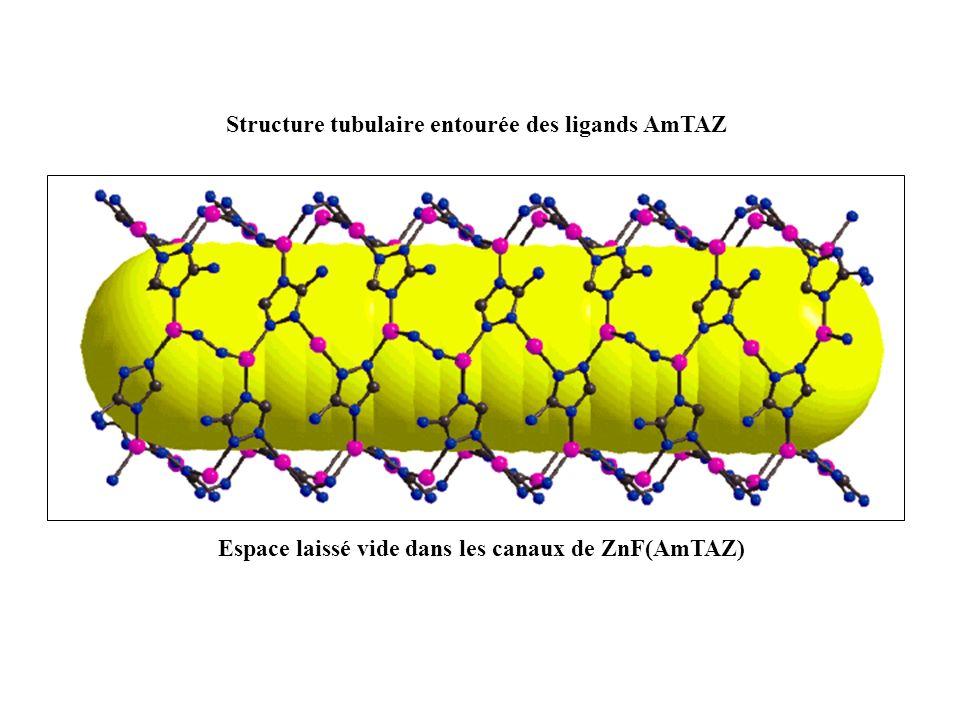 Structure tubulaire entourée des ligands AmTAZ