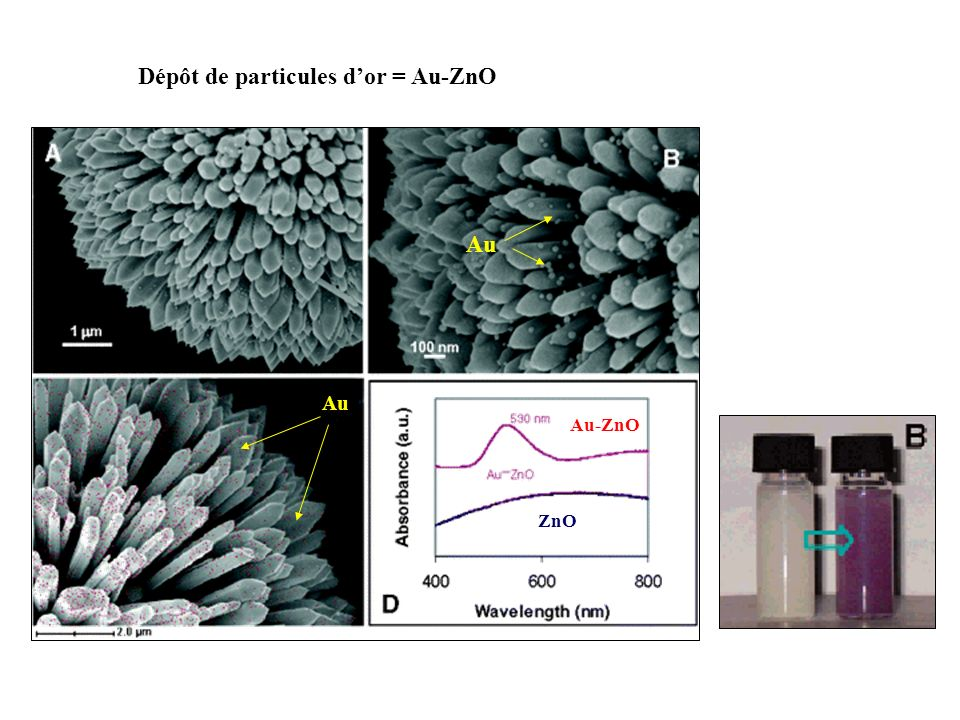 Dépôt de particules d'or = Au-ZnO