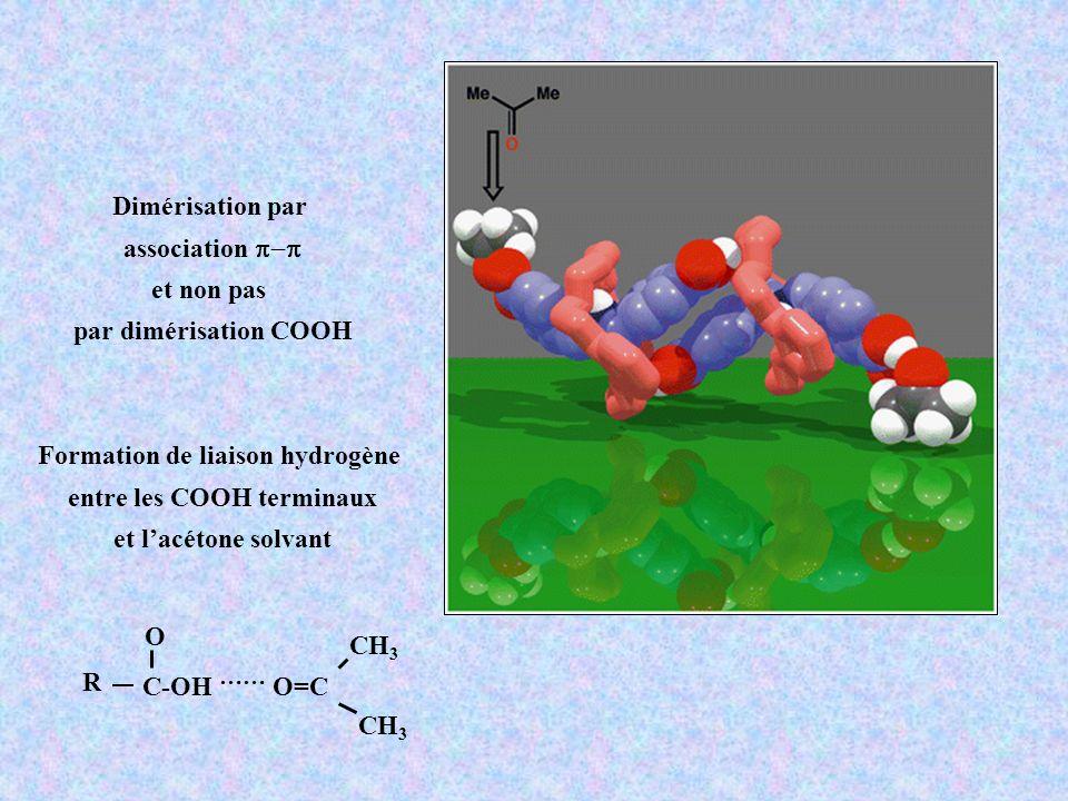 Formation de liaison hydrogène entre les COOH terminaux