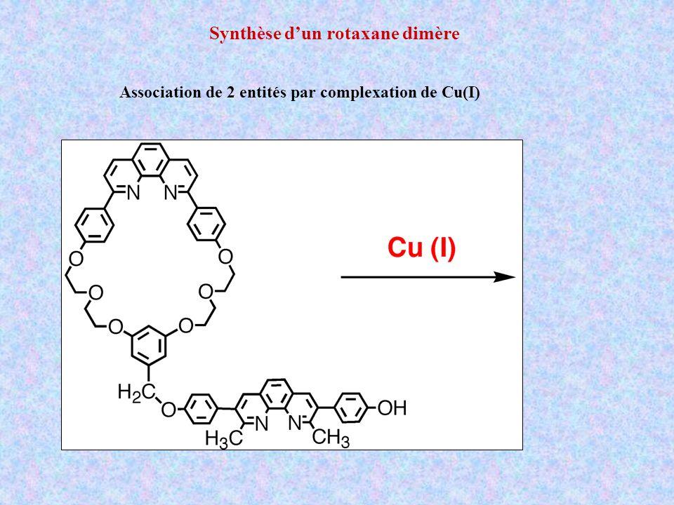 Synthèse d'un rotaxane dimère