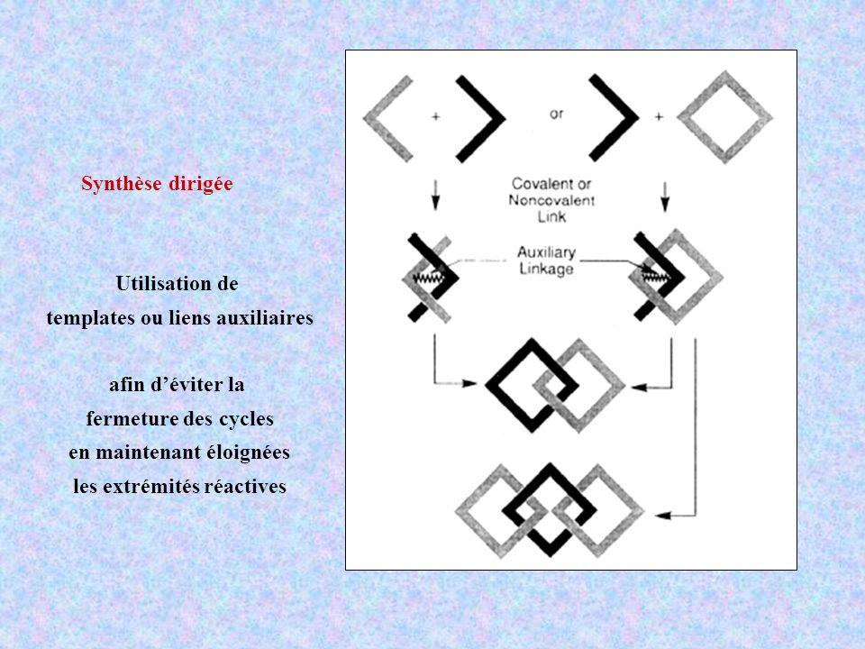 templates ou liens auxiliaires
