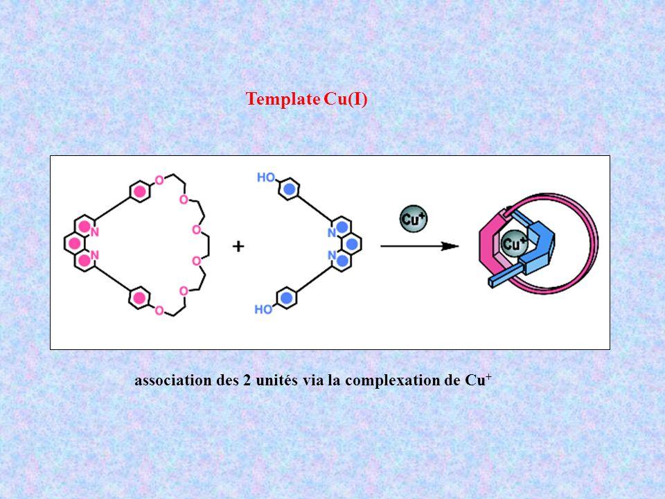 Template Cu(I) association des 2 unités via la complexation de Cu+