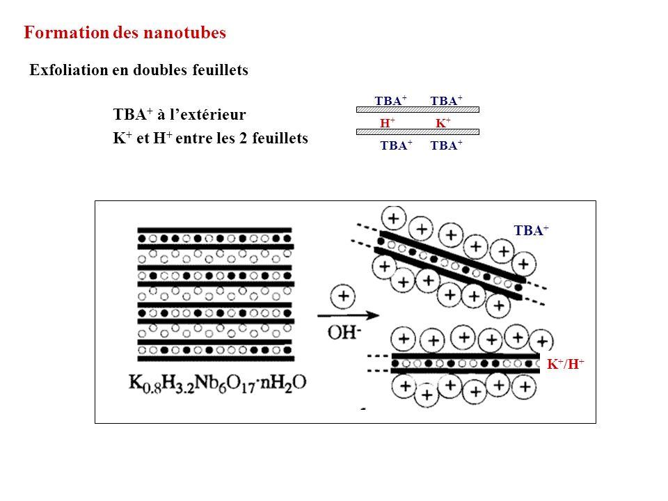 Formation des nanotubes