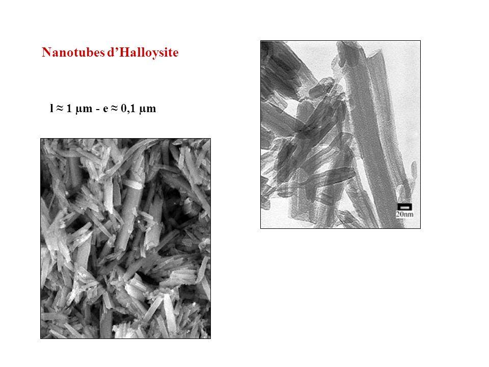 Nanotubes d'Halloysite