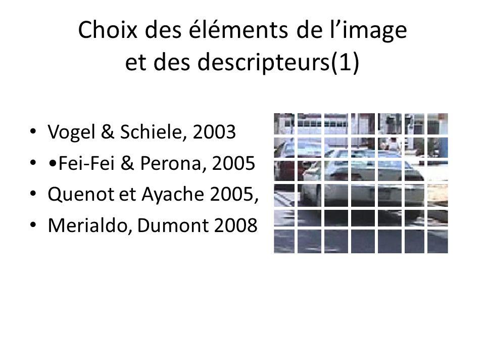 Choix des éléments de l'image et des descripteurs(1)