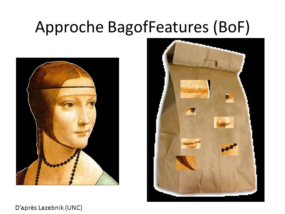 Approche BagofFeatures (BoF)