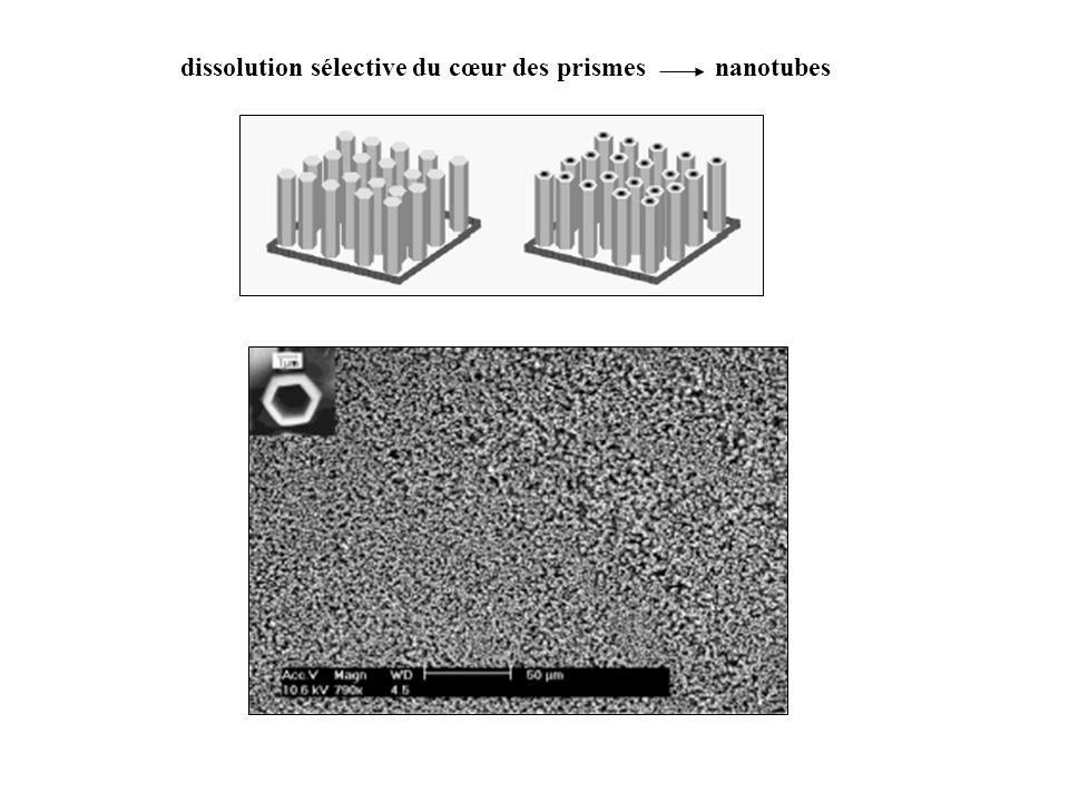 dissolution sélective du cœur des prismes nanotubes