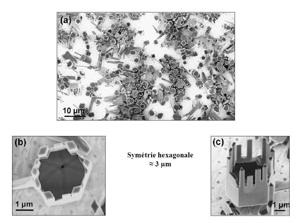 Symétrie hexagonale ≈ 3 µm
