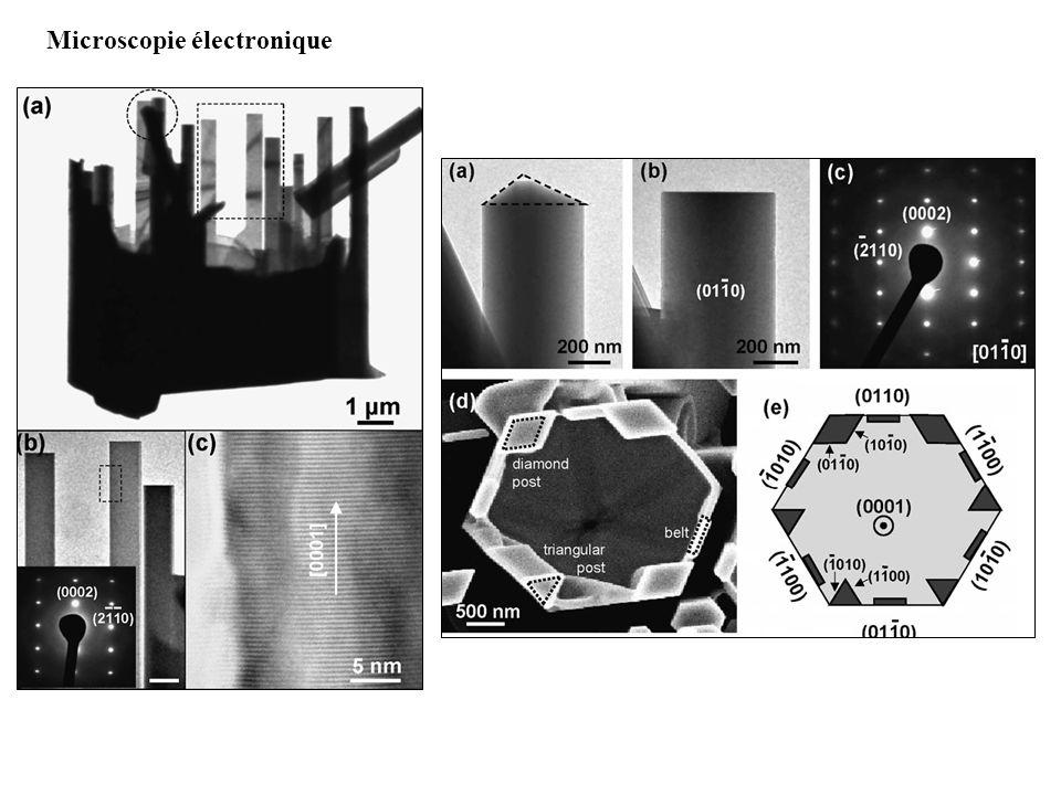 Microscopie électronique