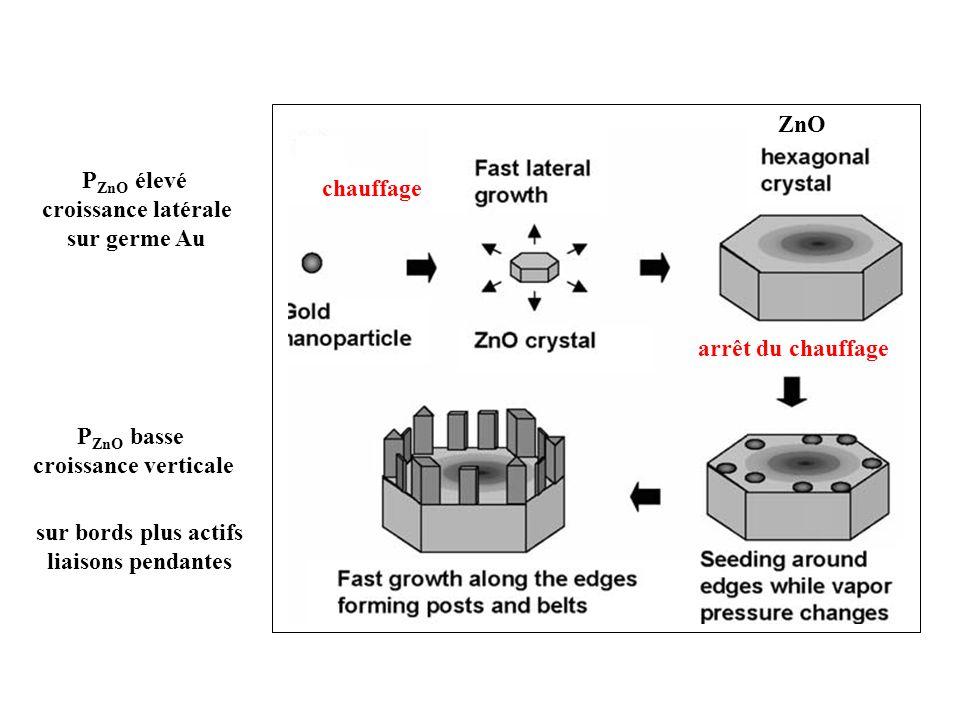 ZnO chauffage. arrêt du chauffage. PZnO élevé. croissance latérale. sur germe Au. PZnO basse. croissance verticale.