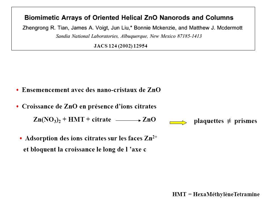 • Croissance de ZnO en présence d'ions citrates