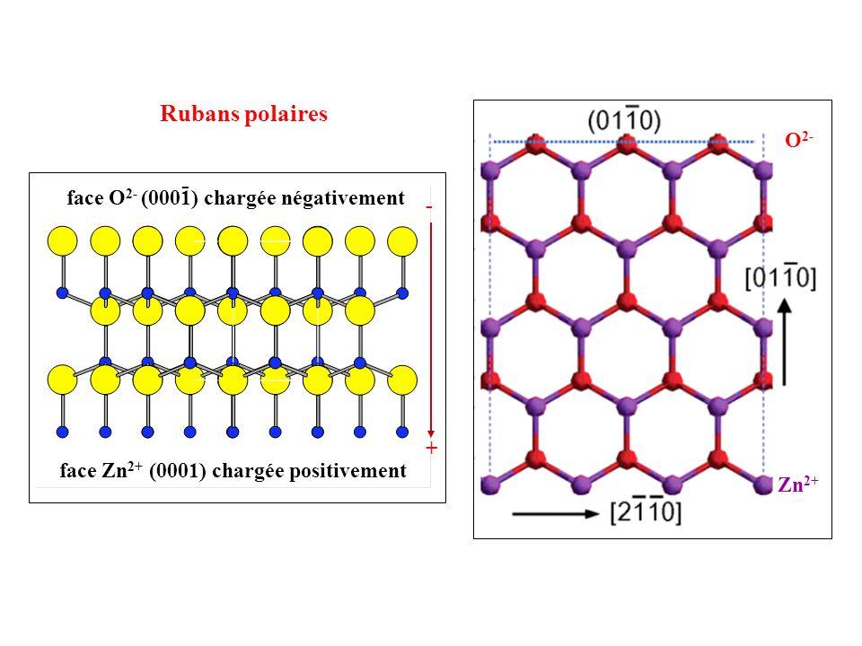 Rubans polaires - O2- face O2- (0001) chargée négativement +