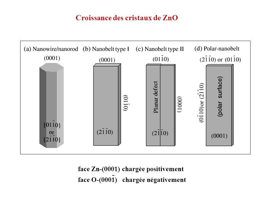 Croissance des cristaux de ZnO
