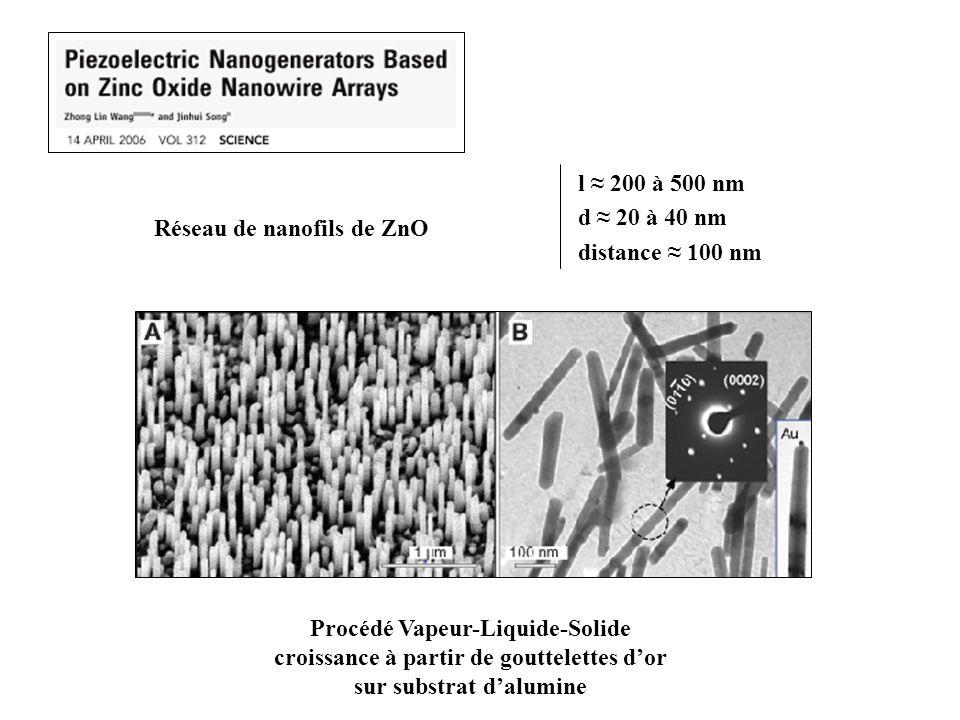 Réseau de nanofils de ZnO