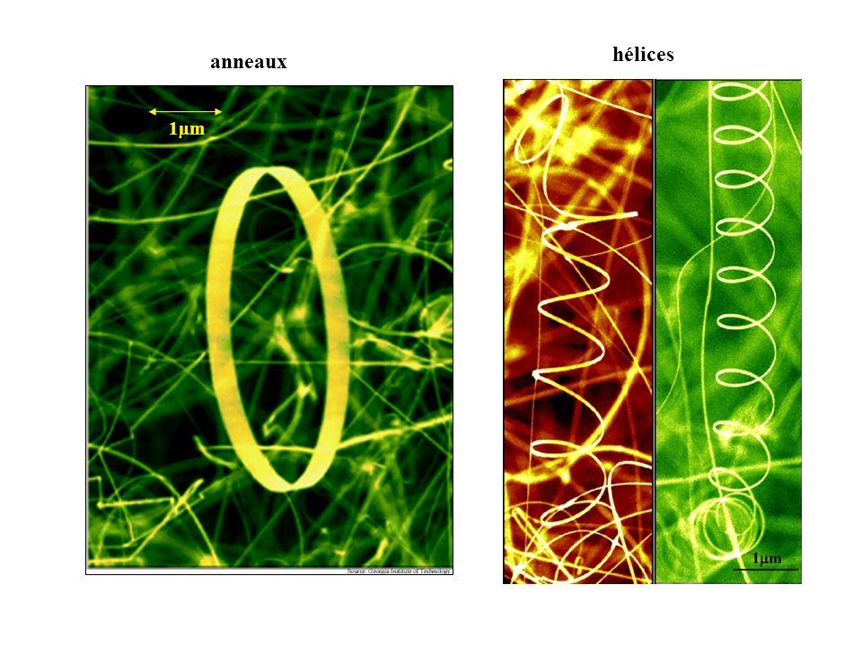 hélices anneaux 1µm