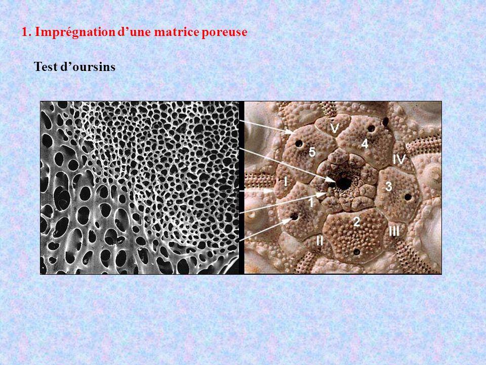 1. Imprégnation d'une matrice poreuse