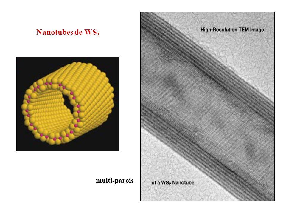 Nanotubes de WS2 multi-parois