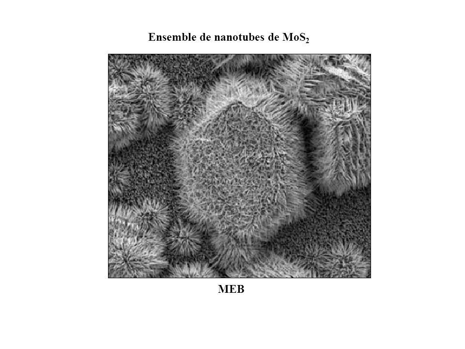 Ensemble de nanotubes de MoS2